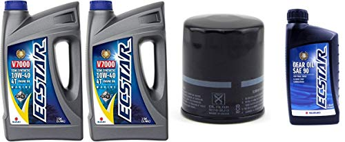Top 7 Suzuki ECSTAR V7000 10W-40 Marine 4-Stroke Engine Oil - Motor Oils
