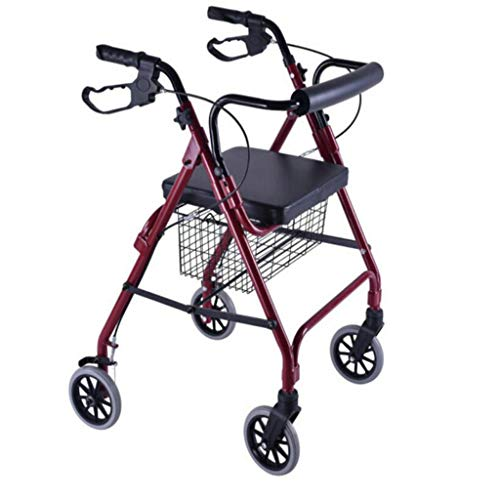 Top 9 Walkers for Seniors - Dollies