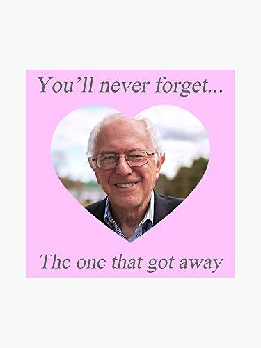 Top 9 Bernie Sanders 2020 Bumper Sticker - Bumper Stickers, Decals & Magnets