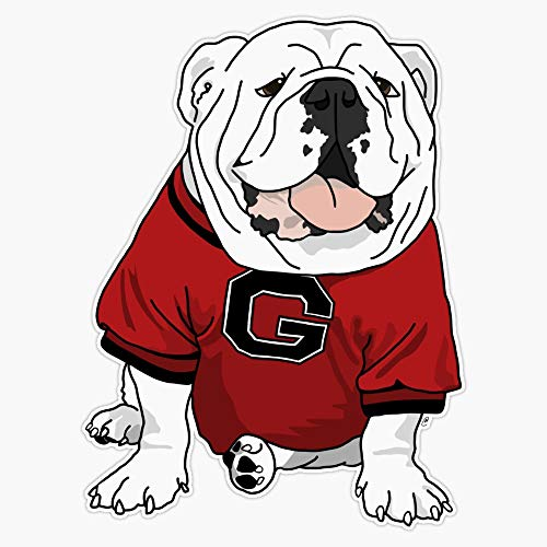 Top 3 Uga Decal Sticker - Bumper Stickers, Decals & Magnets