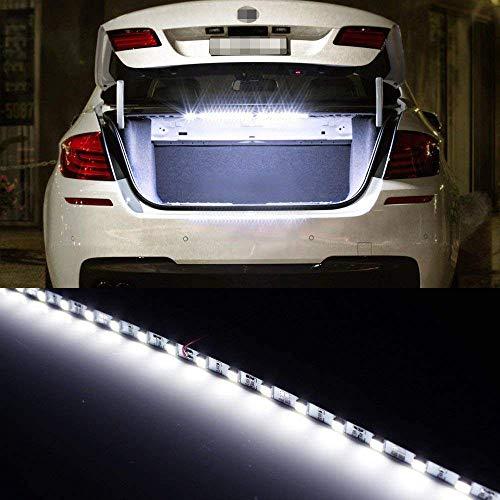 Top 10 iJDMTOY LED Lights - Automotive Neon Accent Light Kits